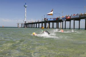Brighton Jetty Classic Photography Michael Coppola